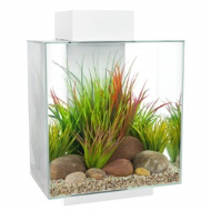 Fluval Edge 46L Aquarium Set - Gloss White